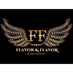 flavor e flavor logo