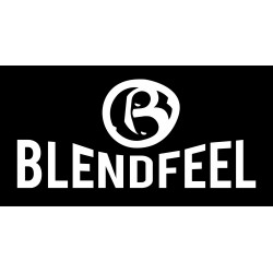 blendfeel revolution logo