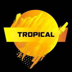 blendfeel tropical
